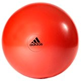 adidas 55cm Gym Ball
