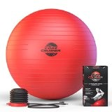 Ballon Swiss Ball de gym 65 cm avec Pompe