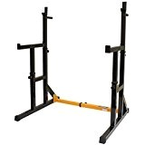 MiraFit Support Réglable de Squat avec Barres a Dips & Assureur Multi Position