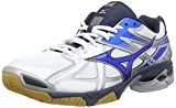 Mizuno Wave Bolt 4, Chaussures Multisport Indoor homme